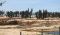 Nóng trong tuần: Nóng vụ phá rừng làm sân golf ở Phú Yên