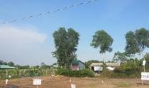 Sai phạm đất đai ở Long Thượng, Cần Giuộc: Cách chức bí thư, phó bí thư xã