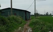 Ồ ạt xây nhà xưởng trái phép trên đất nông nghiệp ở Đông Anh