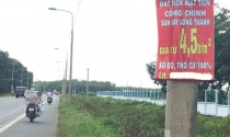 """""""Cò"""" đất nở rộ xung quanh Dự án sân bay Long Thành, Đồng Nai"""