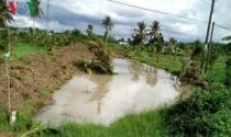 Người dân Bến Tre tự ý đào lấy đất ven Quốc lộ 60