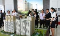Hơn 3.150 doanh nghiệp bất động sản mới được thành lập