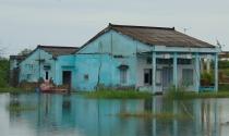 Hàng chục hộ dân khổ sở vì nước ngập không đường thoát