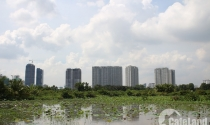 Cận cảnh làng quê giữa Sài Gòn hoa lệ