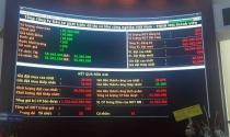 IDICO bán hết 55 triệu cổ phần trong phiên đấu giá, thu về 1.324 tỷ đồng