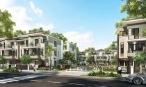 Phân khúc biệt thự - nhà phố đang có mãi lực tốt trên thị trường (8h L3)