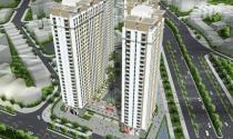 Doanh thu Năm Bảy Bảy tăng đột biến nhờ dự án Citygate