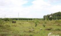 Đồng Nai: Thu hồi 3.620 ha đất từ 188 dự án