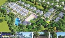 Mở bán biệt thự sinh thái Green Oasis Villas