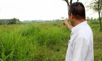Hoang mang vì 'cò' dồn dập hỏi mua đất