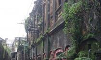 Sợ bê tông rơi vỡ đầu, dân đội mũ bảo hiểm sống trong khu tập thể cũ ở Huế