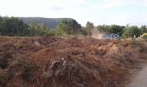 Chống trục lợi từ đất khi chưa lên đặc khu