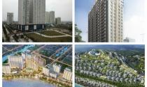 Dự án trong tuần: Ra mắt dự án biệt thự 2.000 tỷ, động thổ căn hộ công nghệ 4.0