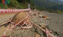 Chậm sửa chữa đường đèo Đại Ninh