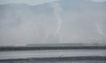 Bụi xi măng tấn công khu đô thị bên bờ vịnh Cửa Lục