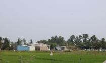 """Vụ """"Bùng phát nhà trái phép ở Đà Nẵng"""": Cơ quan chức năng vào cuộc"""