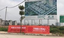 Dừng thi công 26 biệt thự không phép dừng dự án Khai Sơn Hill