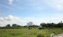 TP.HCM: Những quy định giải quyết tranh chấp đất đai cần phải biết