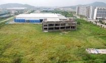 Bất động sản 24h: Dự án treo đổi chủ, người mua đất bị lừa