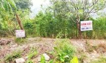Nếu cấm mọi chuyển nhượng đất ở Vân Đồn là phạm pháp?