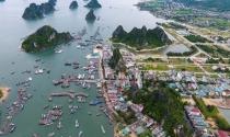 Quảng Ninh: Tạm dừng chuyển đổi, giao đất tại Vân Đồn