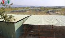 Kon Tum điều tra việc người dân ồ ạt dựng lều lán chờ đền bù