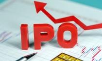 Vinhomes vượt mặt Techcombank trong đợt IPO