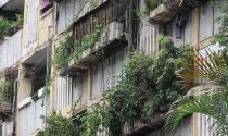 Cải tạo chung cư cũ Hà Nội, khó vì vòng xoáy lợi ích