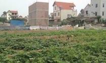 Hà Nội: Khiếu nại tố cáo về đất đai tiềm ẩn phức tạp