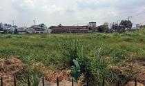 TP HCM: Nhiều bất cập trong quản lý dẫn đến sai phạm về đất công