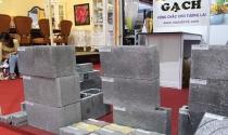 Sản xuất vật liệu xây dựng không nung từ tro xỉ, cần bệ đỡ chính sách