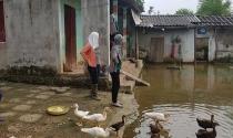 Hợp nhất Hà Nội: Không dám dựng vợ, gả chồng cho con vì dự án treo