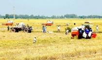 Gỡ vướng đất đai cho các dự án đầu tư phát triển
