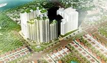 Hà Nội: Chậm tiến độ, Nam Đà Plaza và Khu đô thị Việt Á bị đề nghị thu hồi