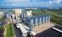 Bà Rịa – Vũng Tàu: Cấp giấy chứng nhận cho dự án 1,2 tỷ USD tại KCN Cái Mép