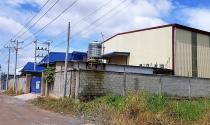 Tỉnh Đồng Nai chỉ đạo xử lý nghiêm vụ xây dựng trái phép tại CCN Phước Tân