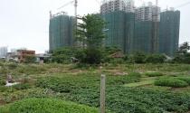 Hà Nội yêu cầu xem xét, thu hồi gần 400 dự án chậm triển khai, để hoang hóa