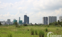 TP.HCM: Công khai phương thức chuyển đổi 26.000ha đất nông nghiệp