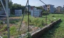 Chợ nhà đất nông nghiệp náo nhiệt giữa lòng Thủ đô: Chủ tịch quận Thanh Xuân bất lực trước vi phạm?