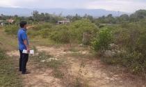 Hà Tĩnh: Cấp nhiều lô đất ở trên đất lâm nghiệp đã có chủ?