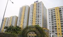TP.HCM yêu cầu nghiệm thu chung cư Carina