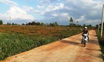 Phân lô, bán nền tại tỉnh Gia Lai: Sẽ chỉ rõ những cán bộ tiếp tay
