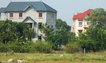 Loạn xây dựng biệt phủ, nhà xưởng ở Sóc Sơn: Hết rừng đến ruộng