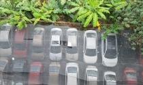 Bãi xe lậu gầm cầu Thăng Long: Ai tiếp tay cho bãi xe phá hoại cầu?