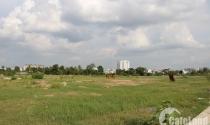 TP.HCM: Gỡ vướng trong lĩnh vực đất đai