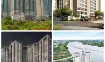 Dự án nào ở khu đông mở bán trong quý 1/2019?