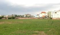 Phó Thủ tướng yêu cầu xử lý dứt điểm sai phạm đất đai tại Thạch Thất