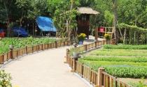 Khu nghỉ dưỡng 'chui' trong rừng phòng hộ