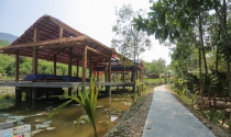 Khu nghỉ dưỡng không phép trên rừng phòng hộ ở Quảng Nam bị 'tuýt còi'