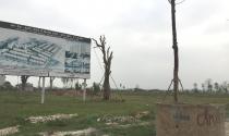 Chính phủ yêu cầu kiểm tra việc 2.000 ha đất bỏ hoang tại Mê Linh